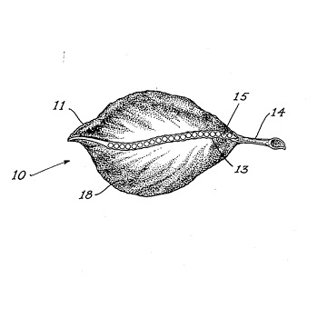 BSK Patent